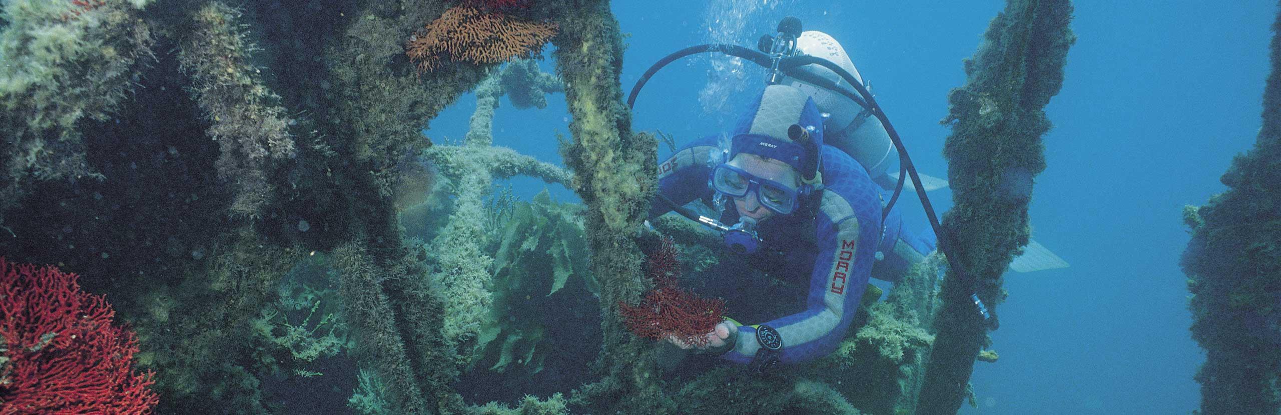 Underwater Trails